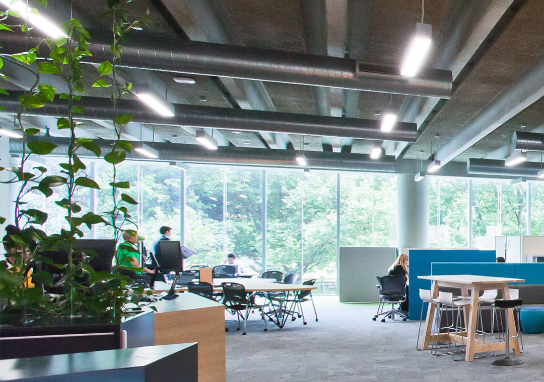 natural light office. Light And Air: Natural Ventilation Are Important For Wellbeing Productivity \u2013 Universal Design Tool Office H